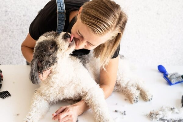 8 Useful Health and Care Pet Tips